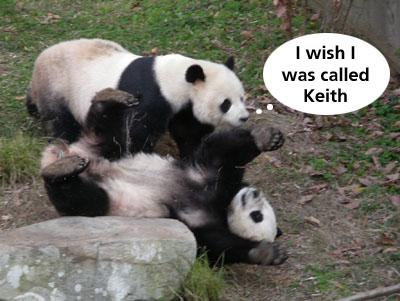 Panda rejection